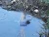 Tìm thân nhân của thi thể trôi trên sông Sài Gòn