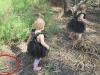 Xem lại ảnh chụp, bà mẹ rùng mình phát hiện 2 con gái nhỏ đã thoát chết thần kỳ trong gang tấc