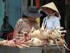 Người Hà Nội nói về việc thành phố muốn người dân từ bỏ thói quen ăn thịt chó: 'Yêu và ăn là 2 chuyện khác nhau'