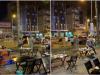 Đang ngồi ăn ốc giữa trung tâm Sài Gòn, nam thanh niên bị nhóm đối tượng dùng súng 'bắt cóc'