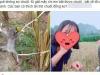 Khoe bắt chuột đồng về ăn, gái quê gan dạ bất ngờ được chú ý nhan sắc