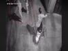 Vụ bé gái bị dâm ô trong ngõ tối tại Hà Nội: Công an vào cuộc xác minh