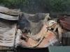 Cháy nhà xưởng 8 người chết ở Hà Nội: Phó Thủ tướng chỉ đạo 'nóng'