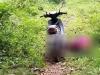 Nam thanh niên tử vong cạnh xe máy trên đồi