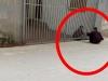 Tình bạn giữa 2 cụ già bị ngăn cách bởi chiếc cửa sắt khiến nhiều người rưng rưng cảm động