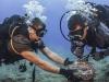 3 sự cố cáp quang biển chỉ có thể khắc phục xong sau Tết Nguyên đán 2020