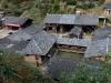 Ngôi làng gần 100 năm không một bóng muỗi, người dân tin có 'cóc thần' bảo hộ