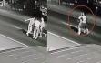 Gã trai mất nhân tính ôm chặt bạn gái lao ra giữa đường để xe ô tô cán