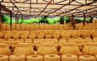 Đất sản xuất gốm có phải nộp thuế sử dụng đất phi nông nghiệp