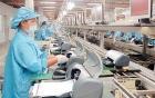Cử nhân thất nghiệp về quê làm công nhân