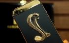 iPhone 5 đặc biệt giá 290 triệu đồng