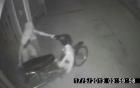 Video: 3 tên trộm lịch sự bỏ dép trước khi vào nhà lấy cắp