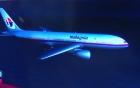 Nhà ngoại cảm phán máy bay Malaysia mất tích đang ở rừng U Minh