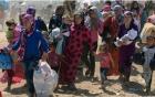 Nghi vấn chiến binh Hồi giáo chặt đầu một bé gái tại Kobani