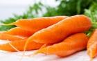 Những thực phẩm cần bổ sung ngay để tránh bệnh mùa lạnh