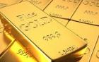 Giá vàng 19/11: Vàng bất ngờ tăng 50.000 đồng/lượng