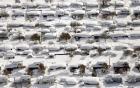 Toàn cảnh nước Mỹ chìm trong băng tuyết đến