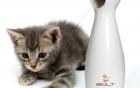9 sản phẩm công nghệ dành riêng cho chó mèo