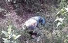 Nữ sinh viên mất tích bị đâm 13 nhát trong rừng