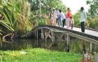 Một học sinh tử vong vì mất thăng bằng khi qua cầu