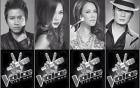 Đàm Vĩnh Hưng, Mỹ Tâm nhận cát-xê khủng khi ngồi ghế nóng The Voice 2015 3