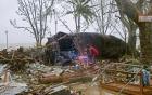 Bão Maysak: Công điện khẩn đối phó cơn bão gần biển Đông 4