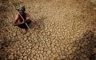 Video: Nắng nóng kinh hoàng khiến hơn 1.400 người chết tại Ấn Độ
