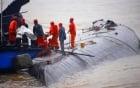 Video: Cứu hộ Trung Quốc cưa thân tàu, tìm người sống sót 3