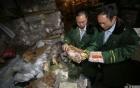 Video: TQ bắt 800 tấn thịt đông lạnh từ thời Mao Trạch Đông