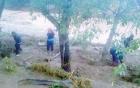 Bão số 1: Mưa lũ ở Sơn La khiến 7 người chết, 4 người mất tích