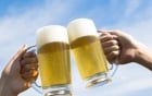 Cán bộ không uống bia Sài Gòn bị tường trình : Hà Tĩnh đã đi quá xa? 4
