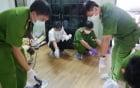Thảm án ở Bình Phước: Tài xế chở gỗ tiết lộ
