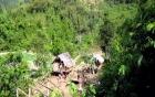 Án mạng 4 người ở Nghệ An: Các nạn nhân tử vong trước đó một tuần 2