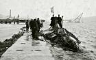Số phận chiếc tàu ngầm kỳ dị Surcouf chở theo vàng của Pháp 11