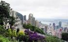 Jack Ma chi 4.000 tỷ mua biệt thự đắt thứ 2 thế giới