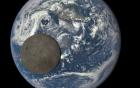 Tiểu hành tinh khổng lồ sắp lướt qua Trái Đất
