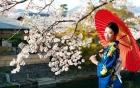 Du lịch tour Nhật Bản Mùa Xuân 5 ngày 4 đêm