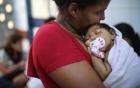 Hơn 2.100 phụ nữ mang thai bị nhiễm virus Zika