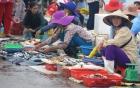 Cá biển rớt giá 5 lần, ngư dân và tiểu thương thất thu