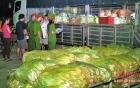 Phát hiện rau cải Trung Quốc chứa chất bảo quản gấp 8 lần