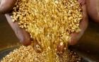 Giá vàng hôm nay 8/6/2016 tụt giảm sau gần 2 tuần đạt đỉnh