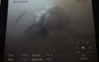 Video: Hình ảnh động cơ máy bay CASA 212 nằm dưới biển