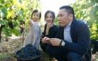 Rộ tin đồn Triệu Vy ly hôn với chồng đại gia