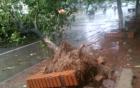 Hà Nội mưa to, gió giật mạnh do ảnh hưởng của bão số 1