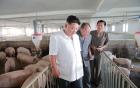 Kim Jong-un ám ảnh việc xóa dấu vết của người chú bị ông hành quyết 5