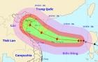 Bão Sarika - bão số 7 giật cấp 16 sẽ đổ bộ vào Việt Nam