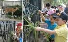 3 địa điểm vui chơi cuối tuần ở Hà Nội thú vị nhất