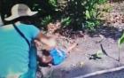 Bác tin nghi phạm chích điện trẻ em sát hại 3 trẻ, phi tang xác
