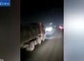 Tên trộm táo tợn lấy hàng từ xe tải đang chạy trên đường cao tốc