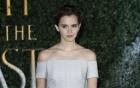 Emma Watson khiến fan ngất ngây với vẻ đẹp như công chúa
